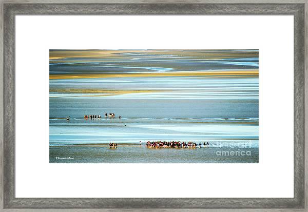 Pilgrims In The Mount Saint-michel Bay Framed Print