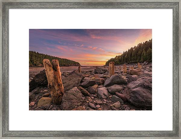 Pilings At Point Wolfe Framed Print