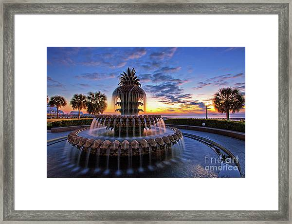 The Pineapple Fountain At Sunrise In Charleston, South Carolina, Usa Framed Print