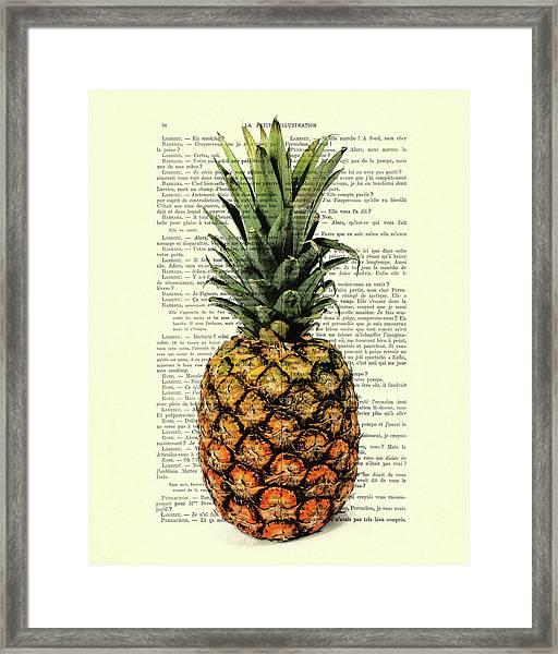 Pineapple In Color Illustration Framed Print