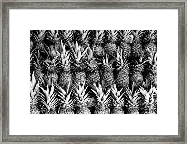 Pineapples In B/w Framed Print