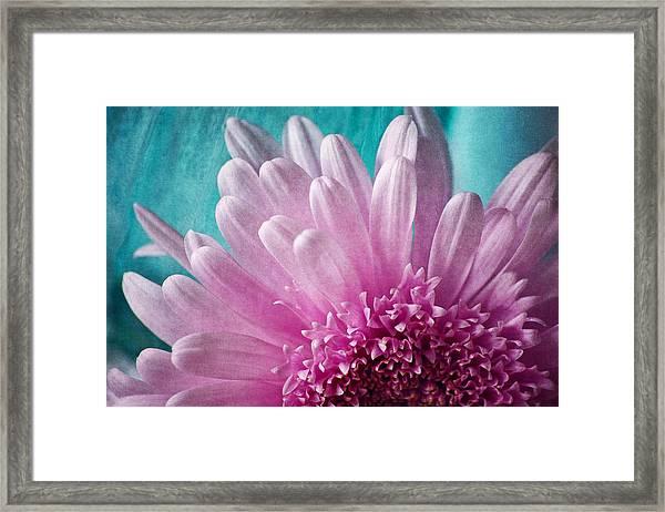 Pink And Aqua Framed Print
