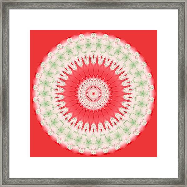 Pink And Green Mandala Fractal 001 Framed Print