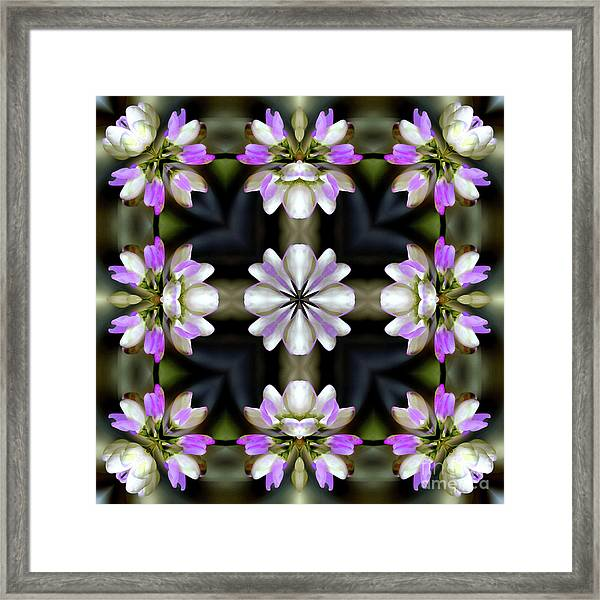 Pink And White Flowers Abstract Framed Print