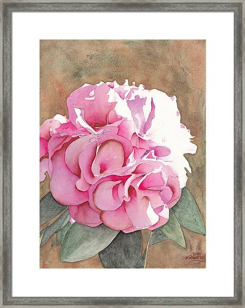 Pink Azalea Framed Print