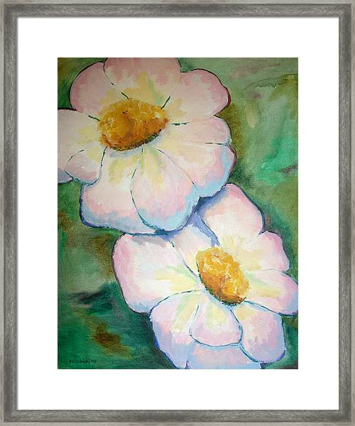 Pink Disc Flowers Framed Print