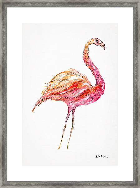 Pink Flamingo Bird Framed Print