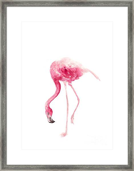 Pink Flamingo Watercolor Art Print Painting Framed Print