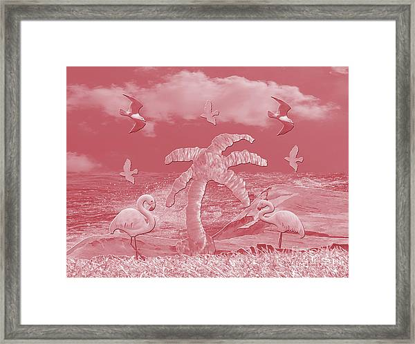 Pink Flamingo's Palms Framed Print