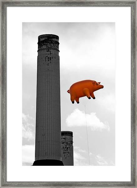Pink Floyds Pig Framed Print