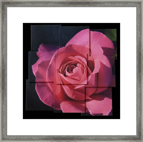 Pink Rose Photo Sculpture Framed Print