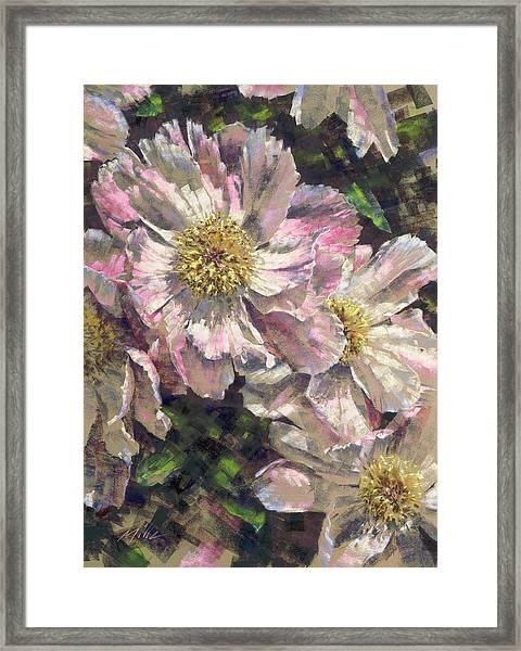 Pink Single Peonies Framed Print