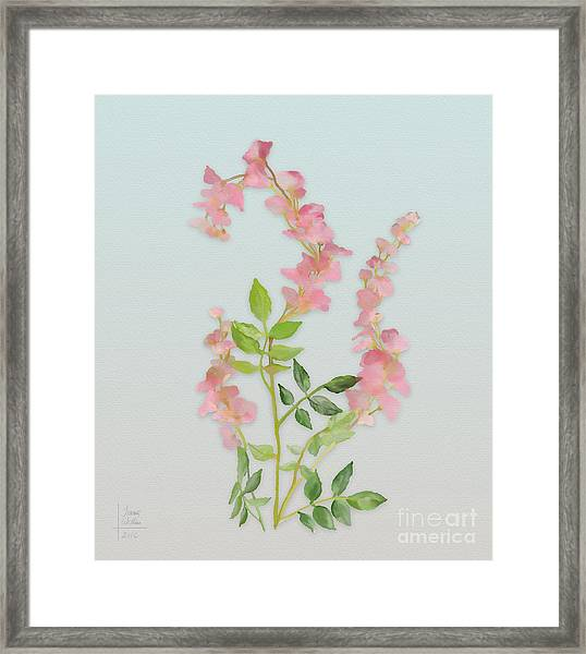 Pink Tiny Flowers Framed Print