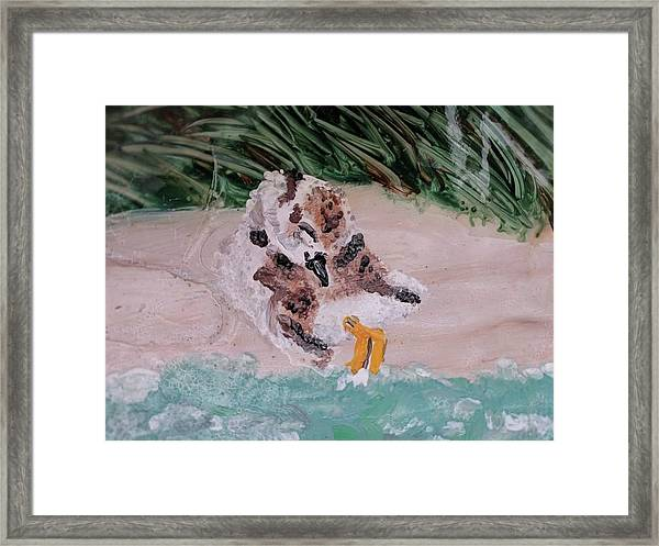 Piping Plover Chick 2 Framed Print