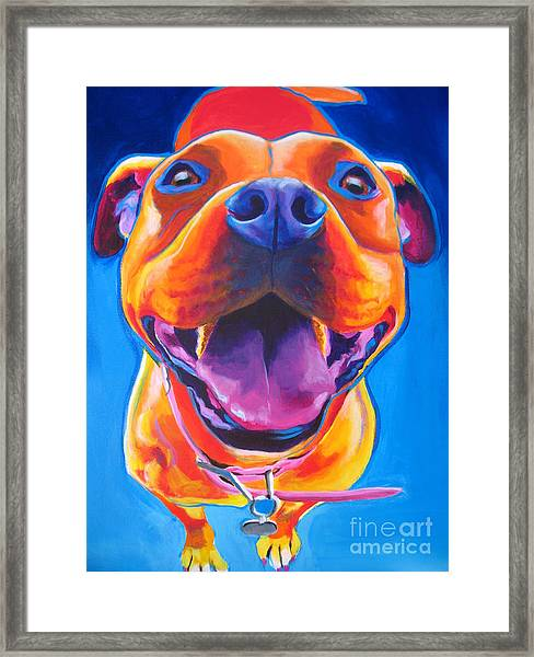 Pit Bull - Lots To Love Framed Print