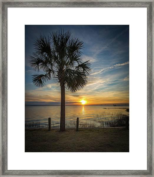 Pitt Street Bridge Palmetto Tree Sunset Framed Print