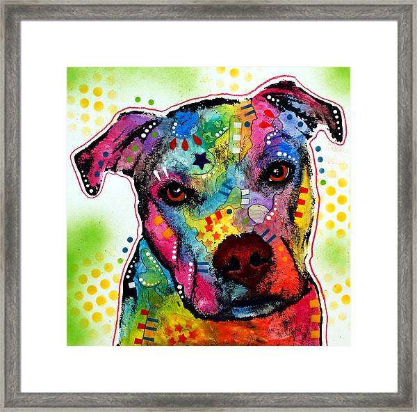Pity Pitbull Framed Print by Dean Russo Art