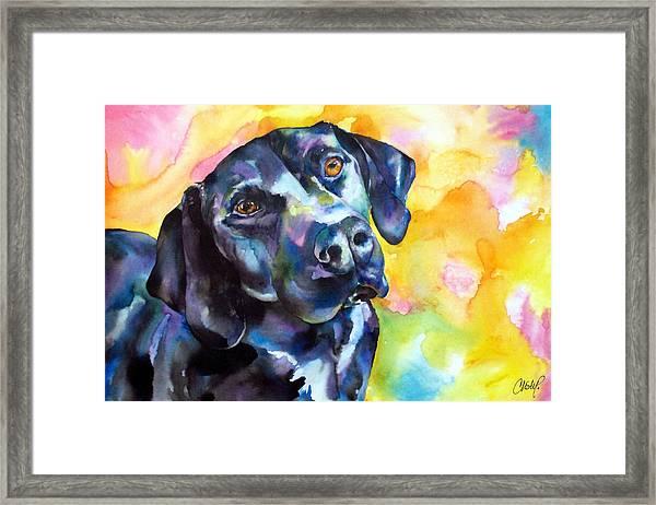 Pixie Dog - Black Lab Framed Print