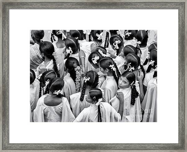 Plaits And Bows Framed Print by Tim Gainey