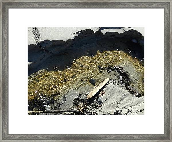 Planet Beach Framed Print