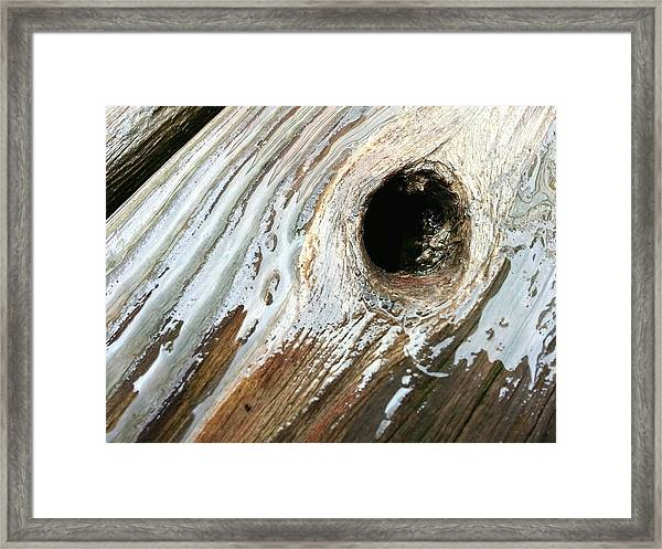 Planking The Right Way? Framed Print