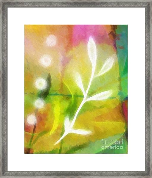 Plant Of Light Framed Print