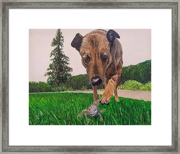 Framed Print featuring the painting Play With Me by Kevin Daly