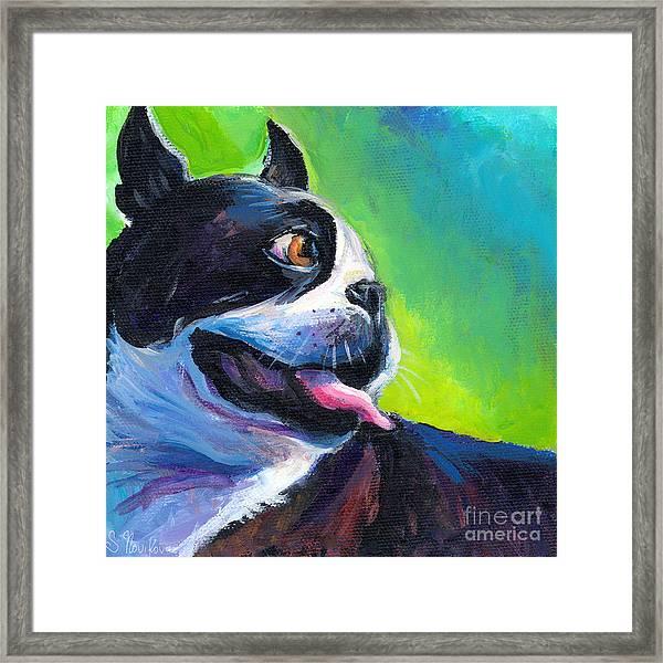 Playful Boston Terrier Framed Print
