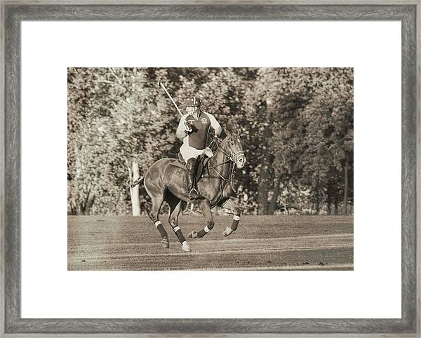 Playing Polo Framed Print
