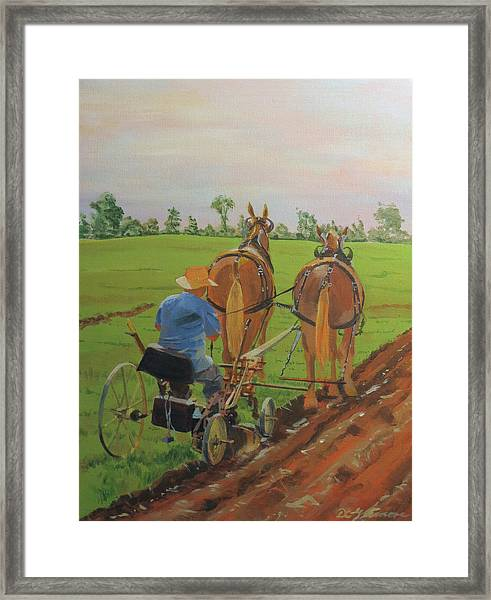 Plowing Match Framed Print