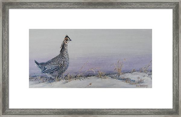 Plum Skies On The Prairie Framed Print