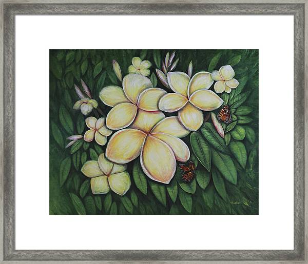 Framed Print featuring the painting Plumeria by Lynn Buettner