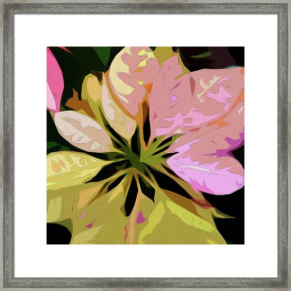 Poinsettia Tile Framed Print