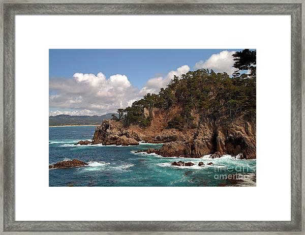 Point Lobos Framed Print