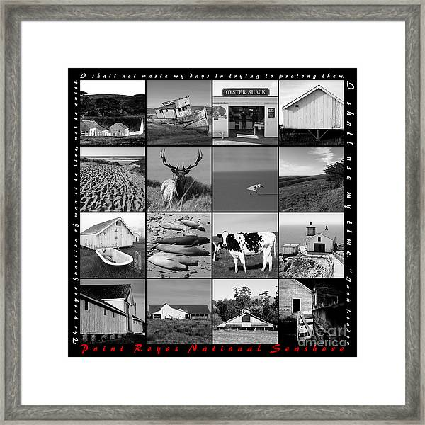 Point Reyes National Seashore 20150102 With Text Bw Framed Print