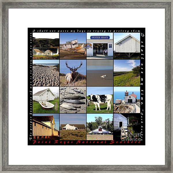 Point Reyes National Seashore 20150102 With Text Framed Print