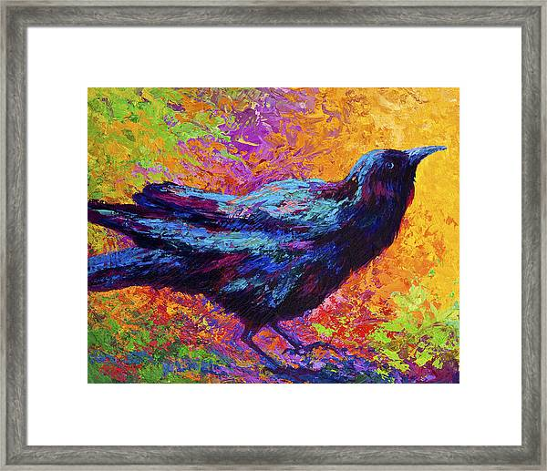 Poised - Crow Framed Print