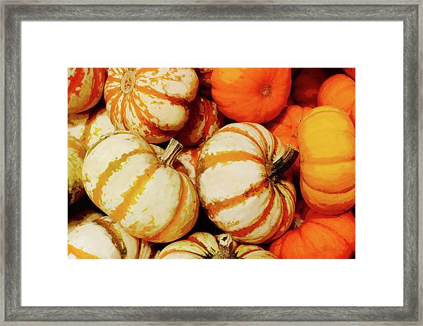 Pokemon Pumpkins Framed Print