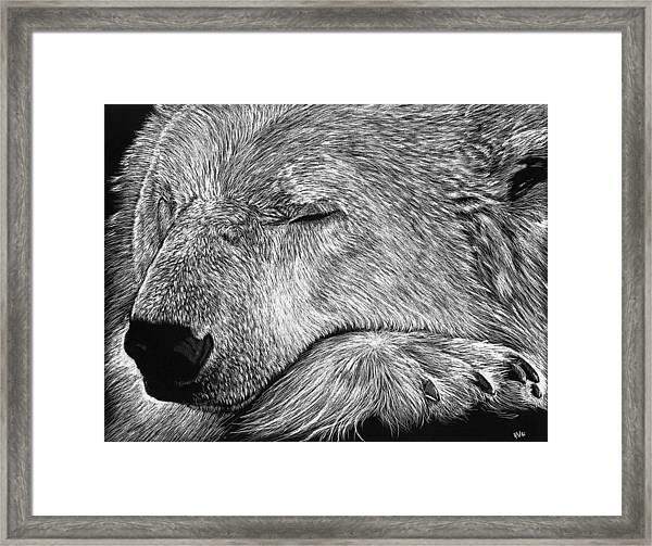 Polar Bear Asleep Framed Print