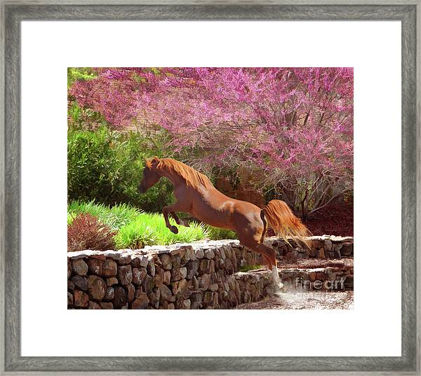 Polaris The Jumper Framed Print