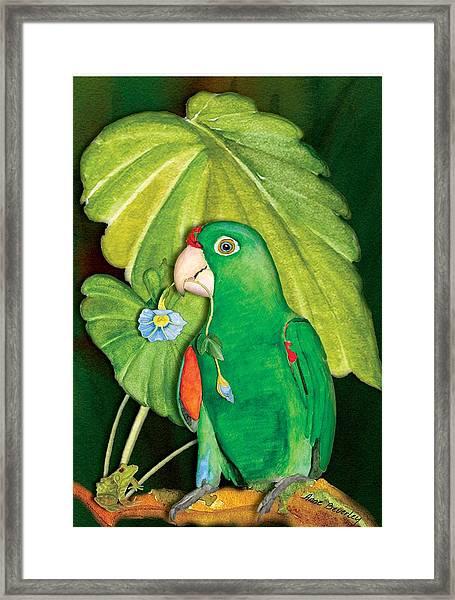 Polly Wants A Flower Framed Print