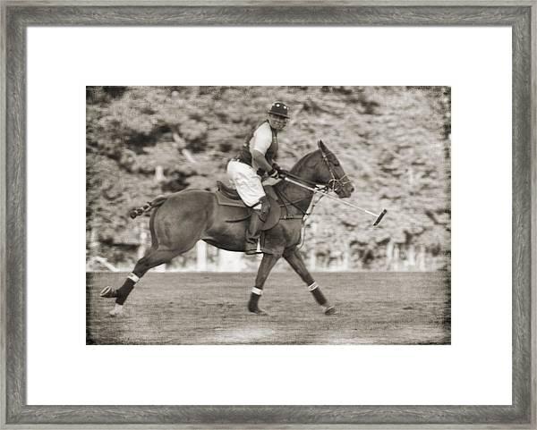 Polo Pony Gallop Framed Print