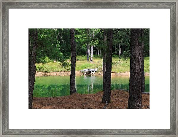 Pond Side Dock Framed Print