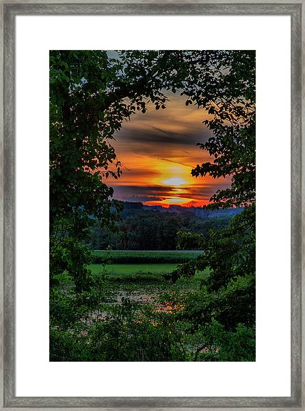Pond Sunset  Framed Print