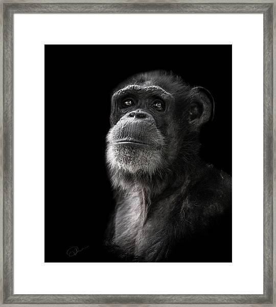 Ponder Framed Print