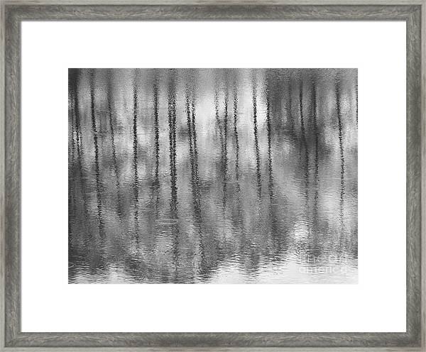 Pondpoland Framed Print
