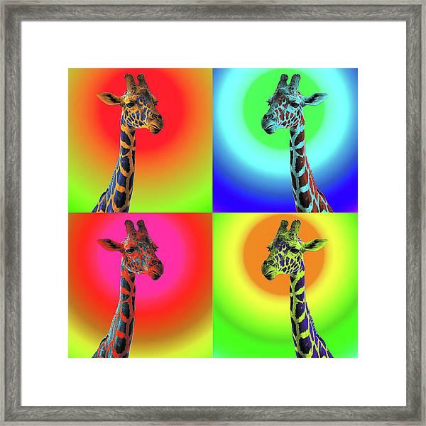 Pop Art Giraffe Framed Print