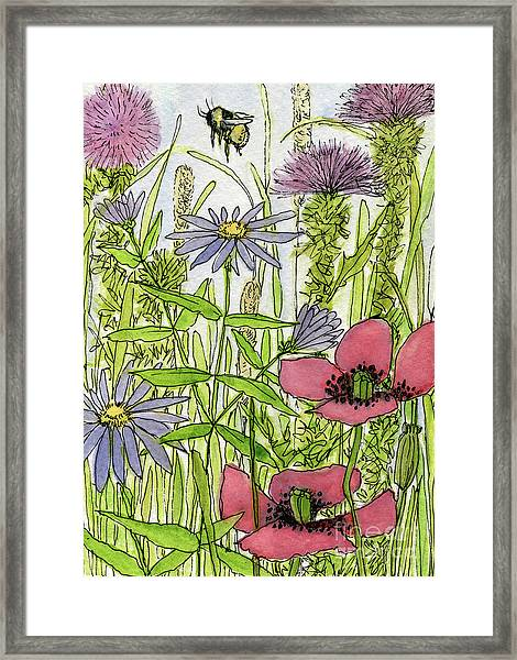 Poppies And Wildflowers Framed Print