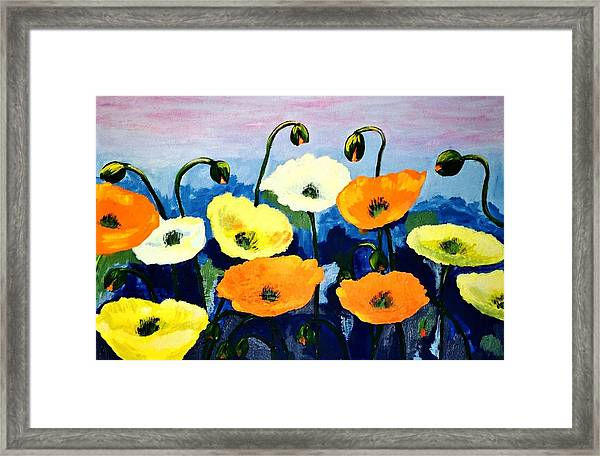 Poppies In Colour Framed Print