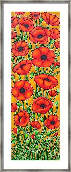 Poppies Under The Tuscan Sun Framed Print
